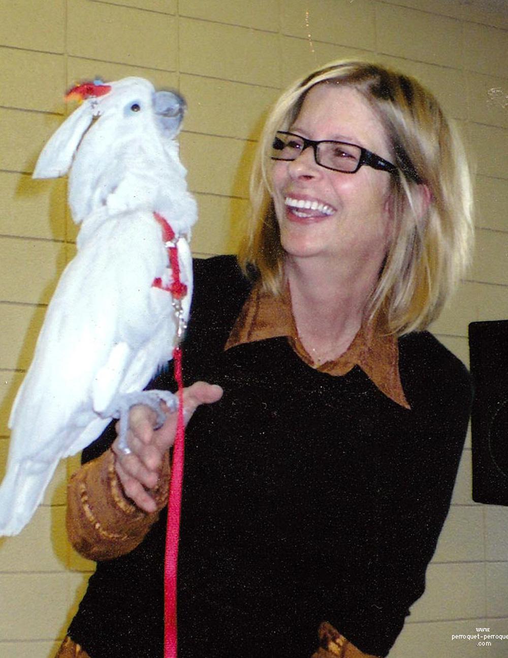 Affiche des quatre conférences sur les perroquets avec Johanne Vaillancourt